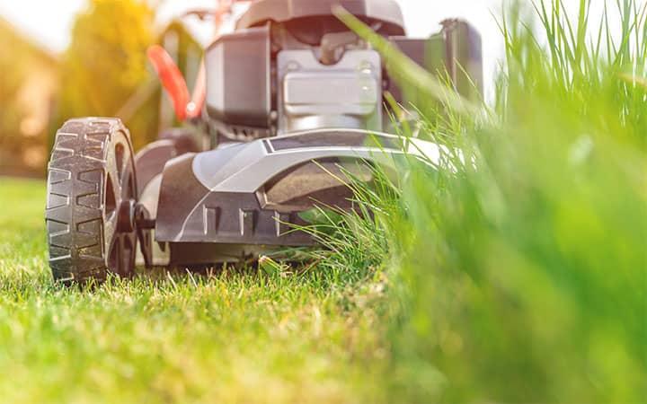 Lawn Mower Starts with Starter Fluid then Dies